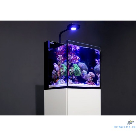Red Sea MAX NANO Komplett-Set Plug & Play® Riffaquarium mit Unterschrank
