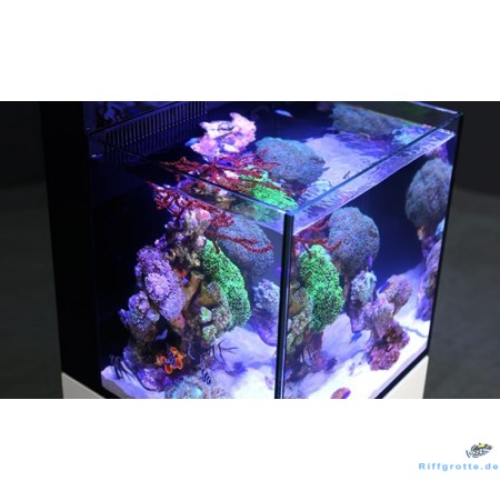 Red Sea MAX NANO Komplett-Set Plug & Play® Riffaquarium (ohne Unterschrank)