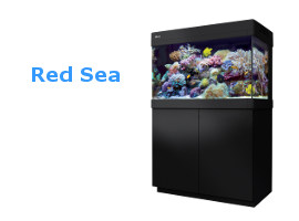 meerwasseraquarium kaufen komplettset meerwasser aquarium im online shop meerwasseraquarium. Black Bedroom Furniture Sets. Home Design Ideas